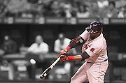 MLB: SEP 12 Red Sox at Rays.  David Ortiz of the Red Sox, Hitting his 500th Home Run in the 5th Inning .