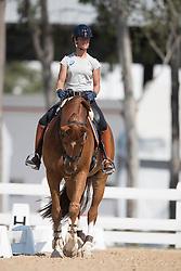 Cornelissen Adelinde, NED, Jerich Parzival<br /> Olympic Games Rio 2016<br /> © Hippo Foto - Dirk Caremans<br /> 05/08/16