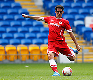 Cardiff City v VfL Wolfsburg 020814