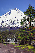"""Llaima volcano rises to 3125 meters elevation (10,253 feet) in Conguillio National Park in the Andes mountain range, near Temuco, Araucanía Region, Chile, South America. Volcan Llaima is one of the largest and most active volcanoes in Chile. The ski center Las Araucarias lies on the volcano's western slopes. What international tourist literature calls the """"Chilean Lake District"""" usually refers to the Andean foothills between Temuco and Puerto Montt including three Regions (XIV Los Ríos, IX La Araucanía, and X Los Lagos) in what Chile calls the Zona Sur (Southern Zone)."""