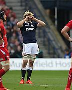 15.02.2015. Edinburgh. RBS 6 Nations 2015 Scotland v Wales.   Scotland's Richie Gray cannot believe his eyes.  from Murrayfield Stadium, Edinburgh.
