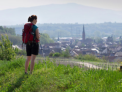 Woman hiker admiring scenic view of Eichstetten, Baden-Wuerttemberg, Germany