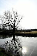 Tull en 't Waal is klein dorp in provincie Utrecht. Het dorp is gelegen aan de rivier de Lek. <br /> <br /> Op de foto:  Schalkwijkse Wetering