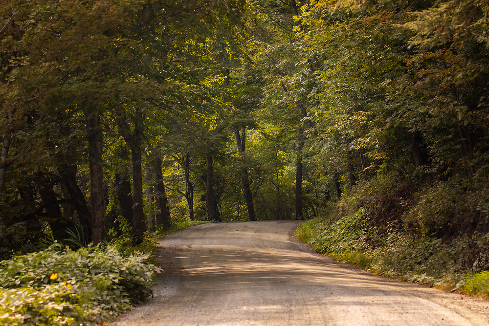 A rural dirt road curving along the riverbanks of central Vermont.