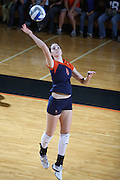 Virginia Cavalier swimming, track and field, cross country, volleyball, softball, golf, field hockey at the University of Virginia in Charlottesville, VA. Photo/Andrew Shurtleff.