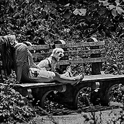 On a very sunny day I looked to my right and saw this woman and her dog enjoying the warmth in Fort Tryon Park.