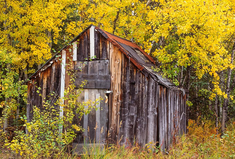 Historic building near the Village of Kobuk, September, Kobuk Valley National Park, Alaska, USA