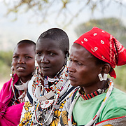 The Stars Foundation visiting S.A.F.E in the Loita Hills near the Tanzanian border in Kenya...It is mainly Maasais who live in the Loita Hills up above the Serengeti plains. They live in small villages and communities called bomas and live mainly of raising and selling live stock such as cattle and goats. Its a very remote region in Kenya, hard to get to without a four wheel drive with very little infrastructure and up till 2010 no mobile phone network. The Maasais are well known though out Kenya and the world for their colorful clothing and their way of keeping their old traditions alive...The charity S.A.F.E which is mainly a thetra group is also working local partners in educating youngsters about HVI/AIDS and Female Genital Mutilation. FGM is a traditional rite of passage for girls into womanhood. FGM has many forms in Kenya, in the Loita Hills FGM involves that the girl's clitoris and inner and outer labia is cut of, an extremely painful and dangerous procedure with  liflong medical and psychological implications. Here a group of midwives, who also perform the FGM, discuss how best to change the trditional way of rites of passage for girls to a less bloody and less dangerous way. They have all been through the procedure and has performed many themselves and are keen to change the tradition.