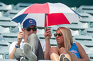 Cubs fans bring their own shade to the Angels' preseason game against the Chicago Cubs at Angel Stadium Sunday.<br /> <br /> <br /> ///ADDITIONAL INFO:   <br /> <br /> angels.0404.kjs  ---  Photo by KEVIN SULLIVAN / Orange County Register  --  4/3/16<br /> <br /> The Los Angeles Angels take on the Chicago Cubs at Angel Stadium during a preseason game at Angel Stadium Sunday.<br /> <br /> <br />  4/3/16
