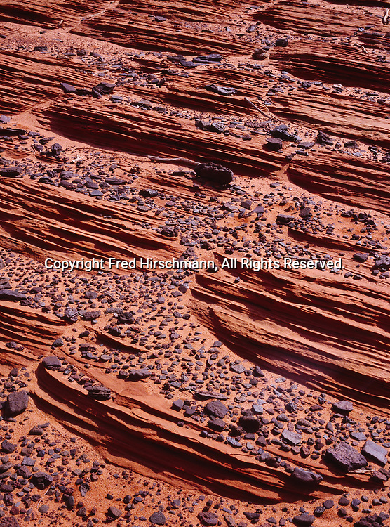 """Hematite or iron stone concretions on bed of layered Navajo Sandstone,Vermilion Cliffs National Monument, Paria-Vermilion Cliffs Wilderness, Arizona. (Note: These concretions are quite similar to the """"Blueberries"""" discovered by the Mars Rover Opportunity.)"""