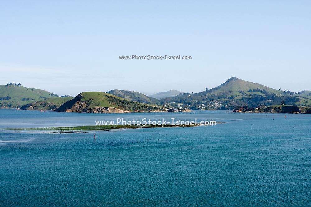 New Zealand, South Island, Otago Peninsula as seen from the sea