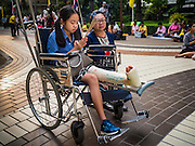 13 OCTOBER 2016 - BANGKOK, THAILAND: A mother and her daughter, who has a broken leg, pray for Bhumibol Adulyadej, the King of Thailand, at Siriraj Hospital Thursday morning before the King's death was announced. Thousands of people came to the hospital to pray for the beloved monarch. Bhumibol Adulyadej, the King of Thailand, died at Siriraj Hospital in Bangkok Wednesday, October 13, 2016. Bhumibol Adulyadej, 5 December 1927 – 13 October 2016, was the ninth monarch of Thailand from the Chakri Dynasty and is known as Rama IX. He became King on June 9, 1946 and served as King of Thailand for 70 years, 126 days. He was, at the time of his death, the world's longest-serving head of state and the longest-reigning monarch in Thai history.       PHOTO BY JACK KURTZ
