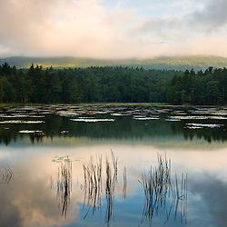 Fog obscures the summit of Mount Monadnock as seen from Gilson Pond in Monadnock State Park in Jaffrey, New Hampshire.