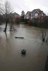 © Licensed to London News Pictures. 21/12/2019. Leatherhead, UK. The river Mole has burst it's banks in Leatherhead, Surrey. River levels remain high after heavy overnight rain in the south where more rain is expected today. Photo credit: Peter Macdiarmid/LNP