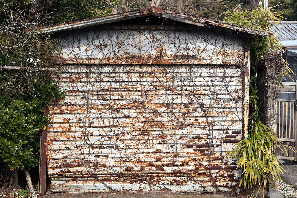 old metal rusty garage door with roots overgrowth
