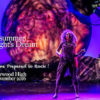 Midsummer Night's Dream Norwood High November 2016, Dan Busler Photography