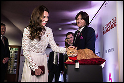 November 3, 2016 - London, United Kingdom - Image licensed to i-Images Picture Agency. 03/11/2016. London, United Kingdom. The  Duchess of Cambridge arriving at  A Street Cat Named Bob premiere in London. .The Duchess of Cambridge greets Bob the cat the star of the new film ''A street cat named Bob'' in aid of the charity ''Action on Addiction'' of which she is a patron. With Bob is his owner James Bowen whose story is depicted in the film. √îA Street Cat Named Bob√ï tells the true story of the unlikely friendship between a young homeless busker, James Bowen, and the stray ginger cat who changes his life. The charity ''Action on Addiction'' brings help, hope and freedom to those living with addiction and those living with people who suffer problems of addiction. It is the UK√ïs only charity working across the addiction field in treatment, professional education to honours degree level, support for families and children, research, and campaigns....Picture by  i-Images / Pool (Credit Image: © i-Images via ZUMA Wire)