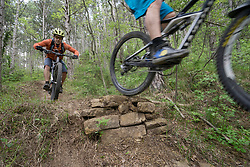 Mountain bikers performing stunt in forest