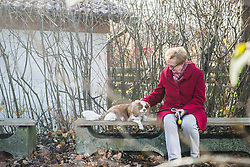 Old woman and her dog sitting outside on bench