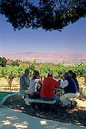 Picnic at Hahn Estates / Smith & Hook Winery, Salinas Valley, Monterey County, California