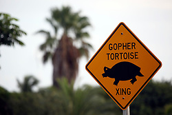 31 July 2015. Marco Island, Florida.<br /> A gopher tortoise crossing sign on Marco Island.<br /> Photo; Charlie Varley/varleypix.com
