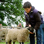 James, son of Bransdale hill farmer Tim Dunn shows a Swaledale lamb at Farndale Show, North York Moors, North Yorkshire, UK