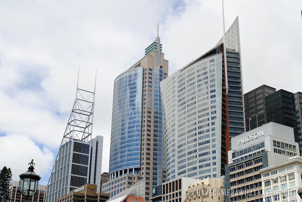 Modern buildings on Sydney's city skyline