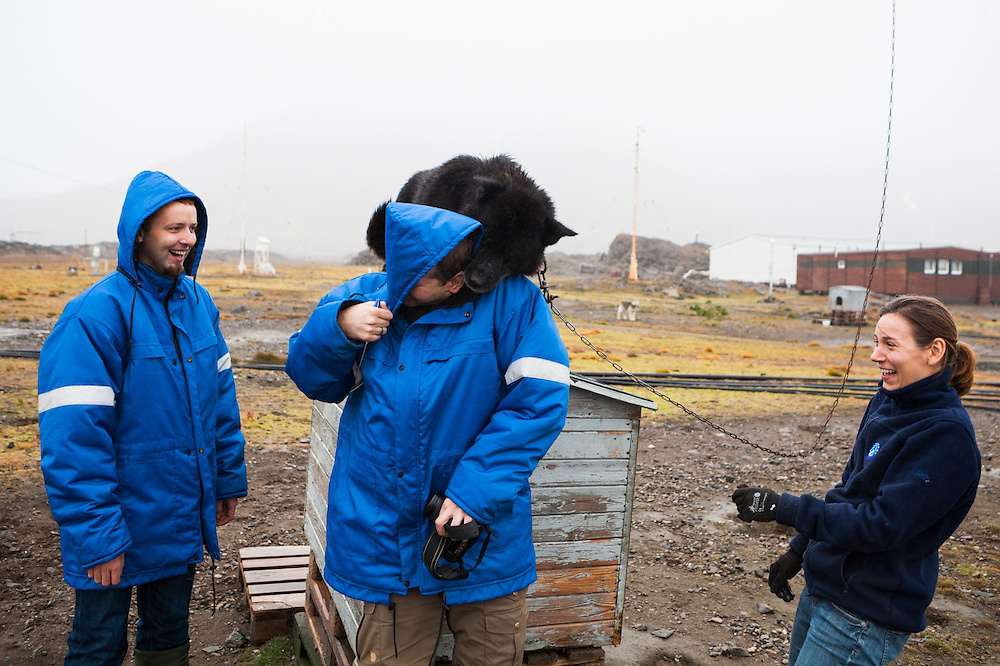 To the amusement of Tomasz Wawrzyniak (left) and Liliana Keslinka-Nawrot, Adam Nawrot is aggressively muzzled by one of the guard huskies at the Polish Polar Station, Hornsund, Svalbard.