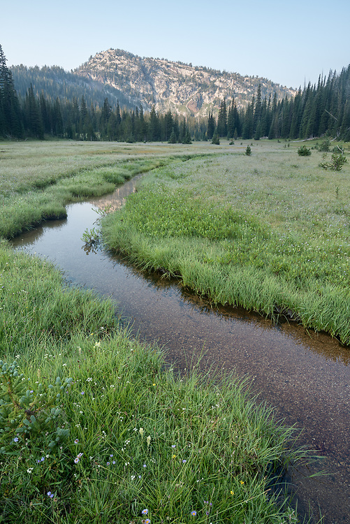 Stream flowing through a meadow in Oregon's Wallowa Mountains.