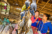12 MARCH 2013 - ALONG HIGHWAY 13, LAOS: Hilltribe women sell bushmeat at a rest stop in a Hmong community along Highway 13 in rural Laos. The paving of Highway 13 from Vientiane to near the Chinese border has changed the way of life in rural Laos. Villagers near Luang Prabang used to have to take unreliable boats that took three hours round trip to get from the homes to the tourist center of Luang Prabang, now they take a 40 minute round trip bus ride. North of Luang Prabang, paving the highway has been an opportunity for China to use Laos as a transshipping point. Chinese merchandise now goes through Laos to Thailand where it's put on Thai trains and taken to the deep water port east of Bangkok. The Chinese have also expanded their economic empire into Laos. Chinese hotels and businesses are common in northern Laos and in some cities, like Oudomxay, are now up to 40% percent. As the roads are paved, more people move away from their traditional homes in the mountains of Laos and crowd the side of the road living off tourists' and truck drivers.    PHOTO BY JACK KURTZ