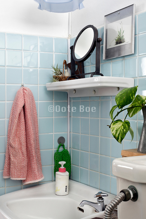 corner with sink in domestic bathroom
