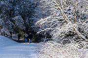 Small figures of people are part of a winter scene in the snow in Highbury Park in Kings Heath on 25th January 2021 in Birmingham, United Kingdom. Deep snow arrived in the Midlands giving some light relief and fun during the current lockdown for people who simply enjoyed the weather.