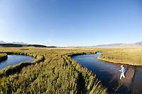 Fly fishing Flat Creek in the National Elk Refuge near Grand Teton National Park. Jackson, Wyoming.
