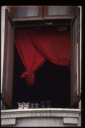China - Chinese  - population - shopping - economy  -  consumer -  textiles - industry (PHOTO