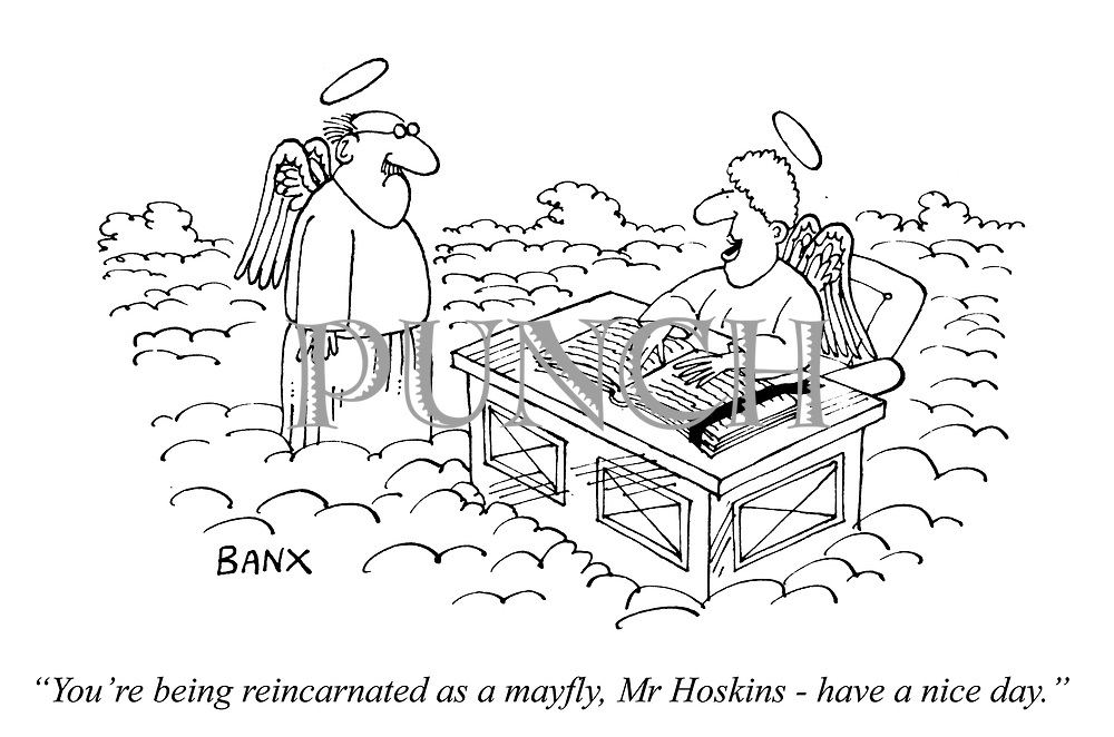 """You're being reincarnated as a mayfly, Mr Hoskins - have a nice day."""