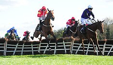 Punchestown Festival - 04 May 2019