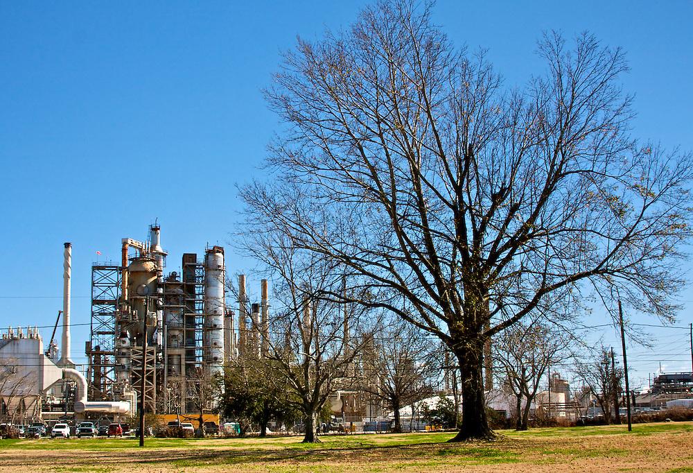 Tree and Refinery, Chalmette, LA