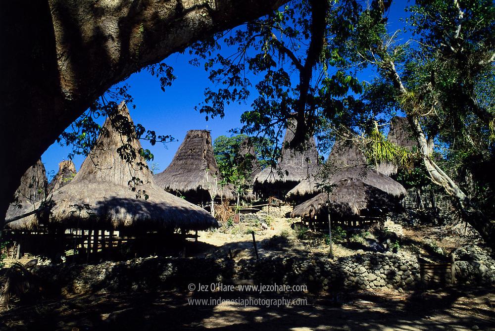 Traditional village, Sumba Timur, Nusa Tenggara Timur, Indonesia.