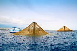3,000-cubic-meter submersible fish pens installed in open ocean just off Kona Coast to raise Kona Kampachi, Hawaiian yellowtail, aka almaco jack or kahala, Seriola rivoliana, note - the submersible fish pens in raised postion to feed the fish inside, Big Island, Hawaii, Pacific Ocean