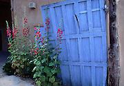 Hollyhocks and blue door, Santa Fe, New Mexico