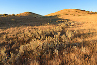 Before leaving Grasslands, I hiked the 7 mile (13km) Broken Hills trail at sunrise.