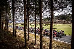 Peloton during cycling race 6th Grand Prix Adria Mobil 2021, on March 28, 2021, in Novo mesto, Slovenia. Photo by Vid Ponikvar / Sportida