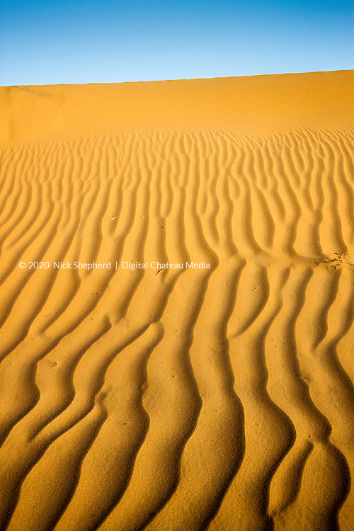Desert Sands in Liwa, UAE.