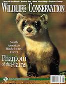 Published  Nature & Wildlfie Images by  D. Robert & Lorri Franz