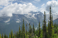 Selkirk Mountains seen from Abbott Ridge Trail Glacier National Park British Columbia