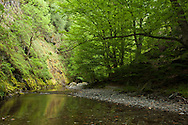 White River eco-way in Central Balkan