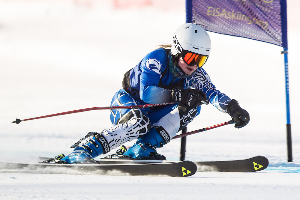 Paige Whistler of Colby College, skis during the first run of the women's giant slalom at the Dartmouth Carnival at Dartmouth Skiway on February 7, 2014 in Lyme, NH. (Dustin Satloff/EISA)