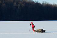 Montgomery, New York - A man pulls his ice fishing equipment across Diamond Lake in Winding Hills Park on Saturday, Jan. 24, 2014.