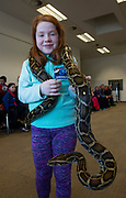 25/11/2018 Repro free:   Robots, Scientists and plenty of excitement at NUI Galway for the Galway Science and Technology festival. Amelia Harrison 8 from Galway City at Nui Galway for the  with a 10 year old Python. Photo:Andrew Downes, xposure .