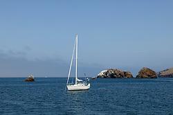 Sailboat Near Santa Cruz Island